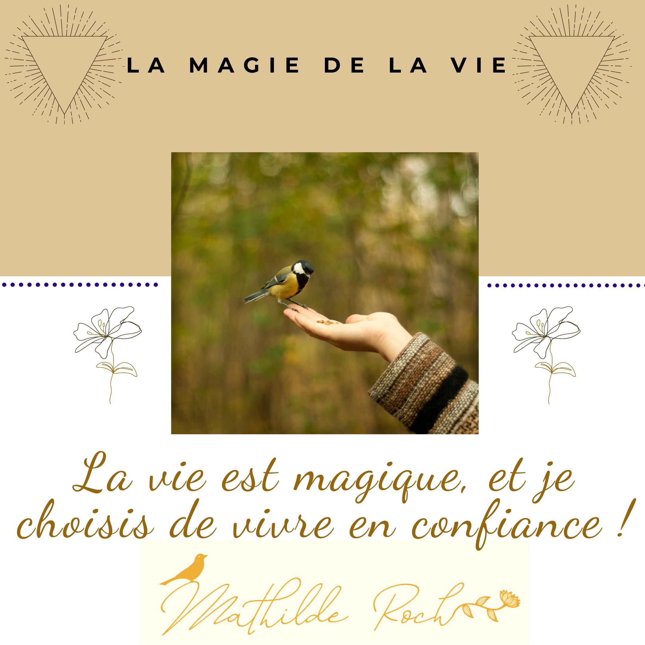 la vie est magique !