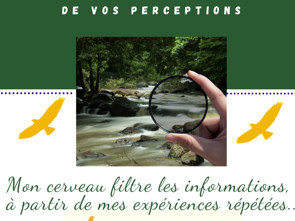 filtre de perceptions