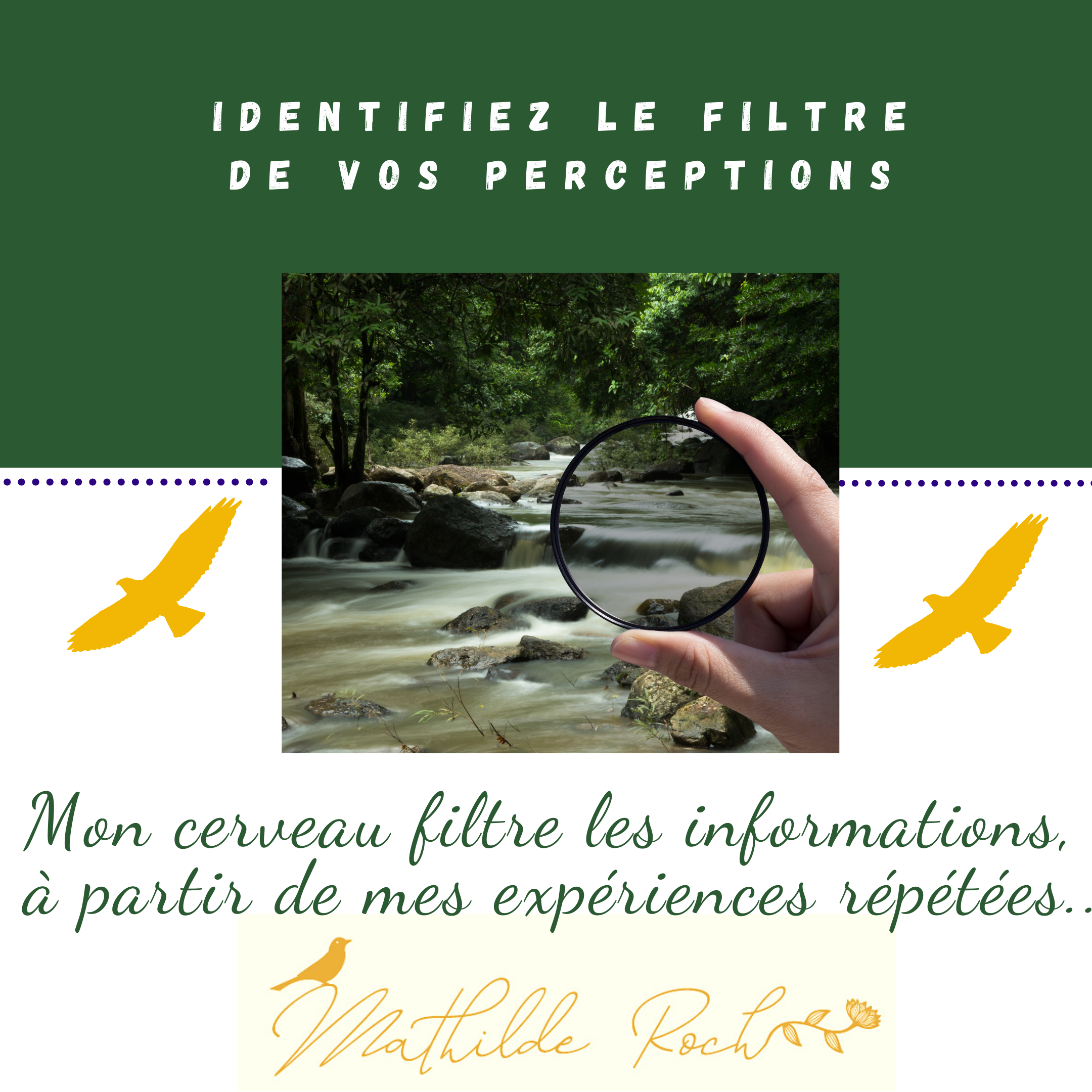 filtre de perceptions